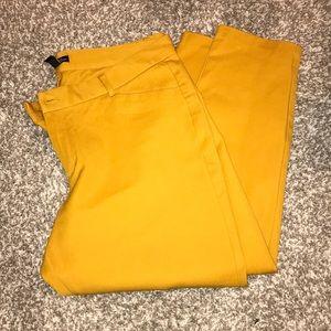 GAP 16R Slim City Crop Pants